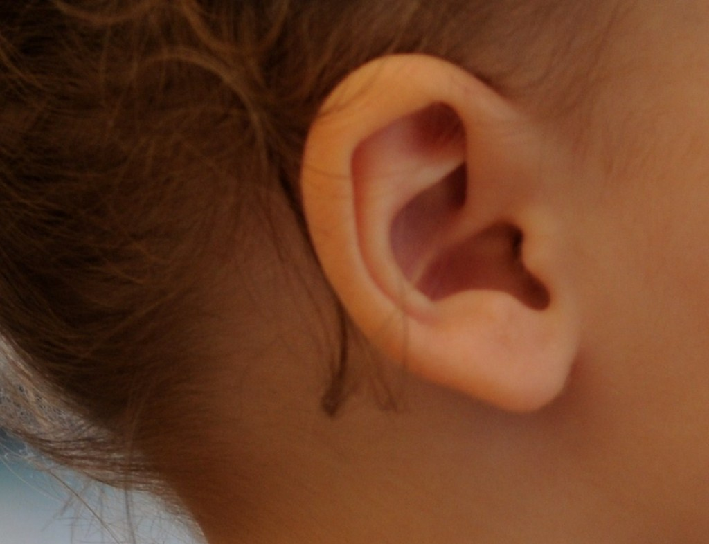 Toddler Ear 3
